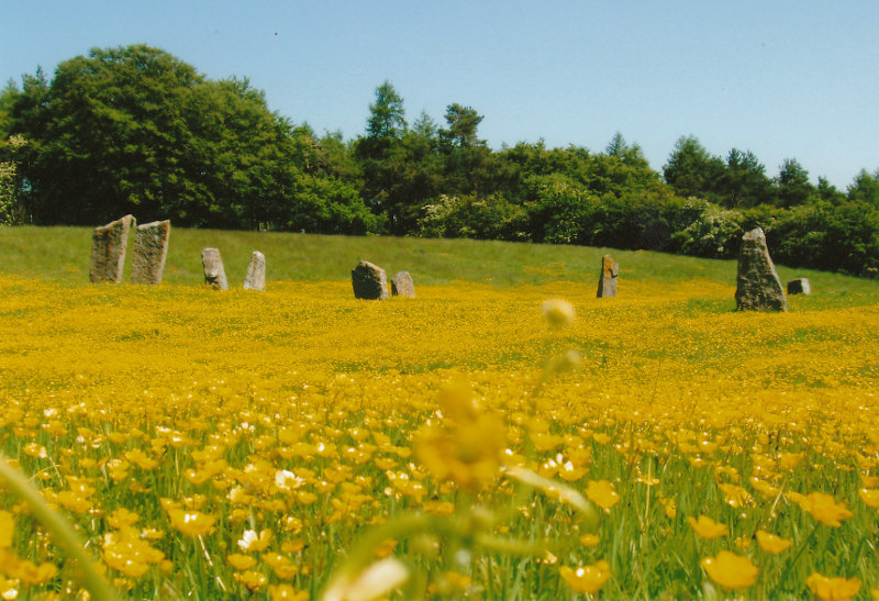 stone circle field at Lime Tree Farm